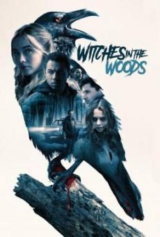 ดูหนังฟรี24ชั่วโมง Witches in the Woods